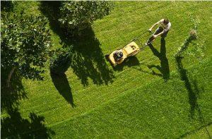 lawn mower | Greg's Small Engine Repair & Service