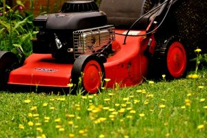 mow the lawn | Greg's Small Engine