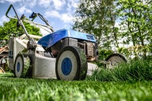 Buying an Electric Lawn Mower