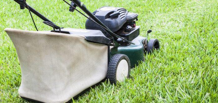 choosing a lawnmower